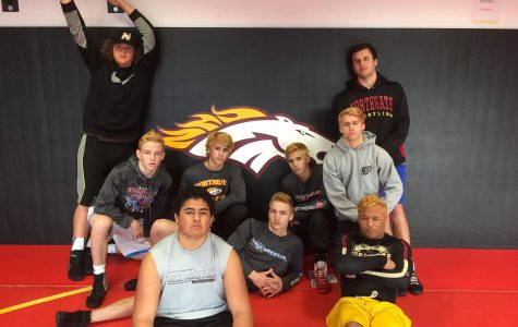 Nine wrestlers compete at NCS after second place league finish