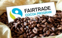 Northgate's Human Rights class hopes to bring attention to and promote fair trade companies.