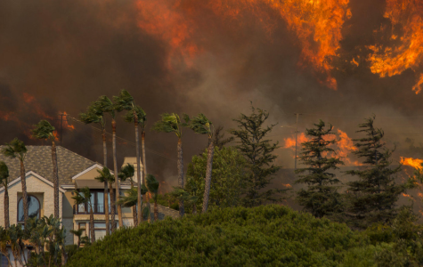 How to help victims of the California fires