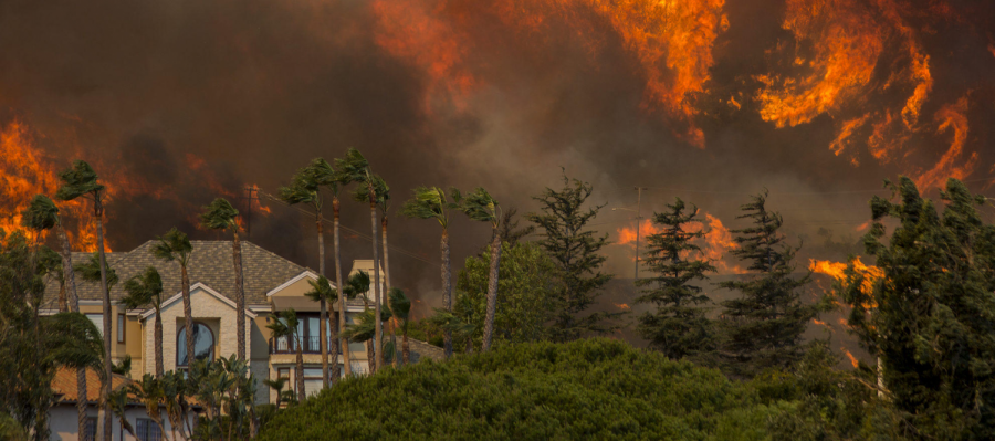 How+to+help+victims+of+the+California+fires
