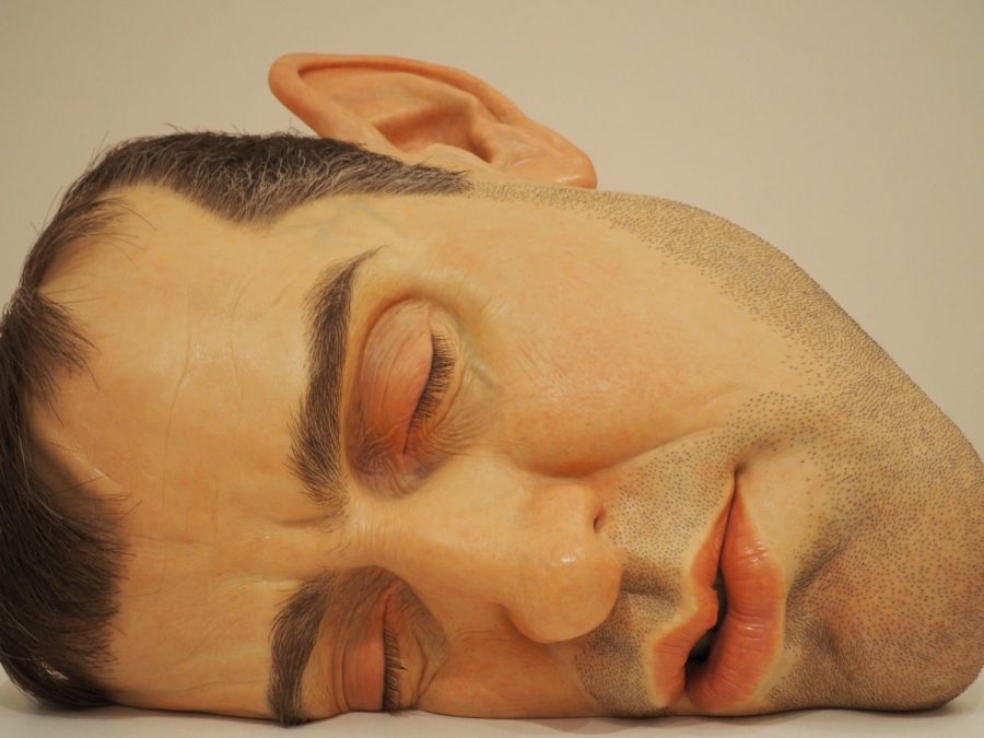 A+hyperrealistic+sculpture+of+a+man%E2%80%99s+face.%0A