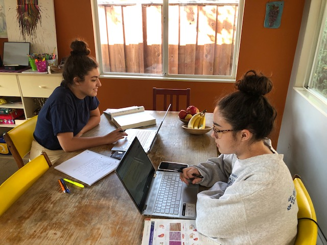 Seniors Zoe Moss, left, and her sister, Camille, participate in their sociology class first period Monday Oct. 5.  Zoe Moss said she