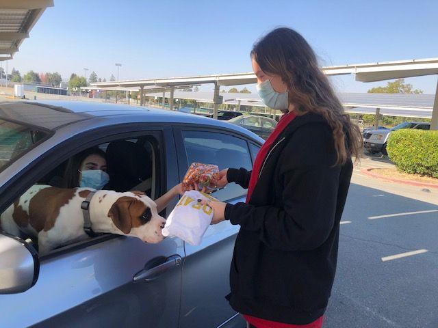 Doggie drive-thru: