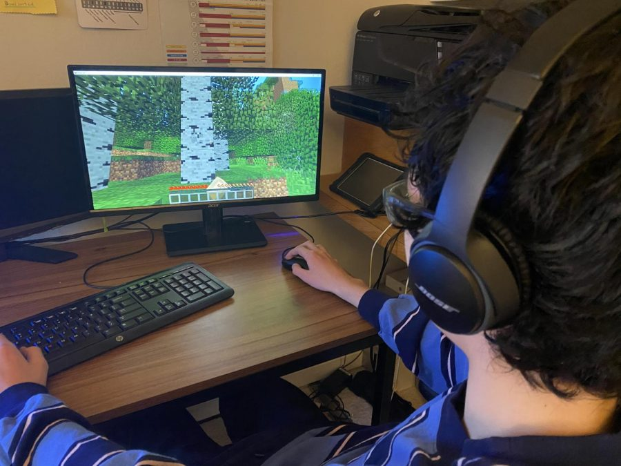 Freshman Sean Donelan  enjoys a popular video game called Minecraft in January.